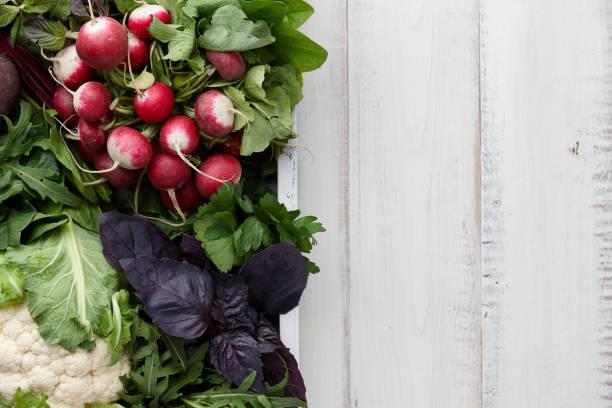 frisches gemüse und kräuter in holzkiste - radieschen salat stock-fotos und bilder