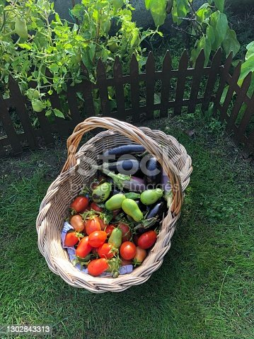 Fresh vegetables fresh from the garden