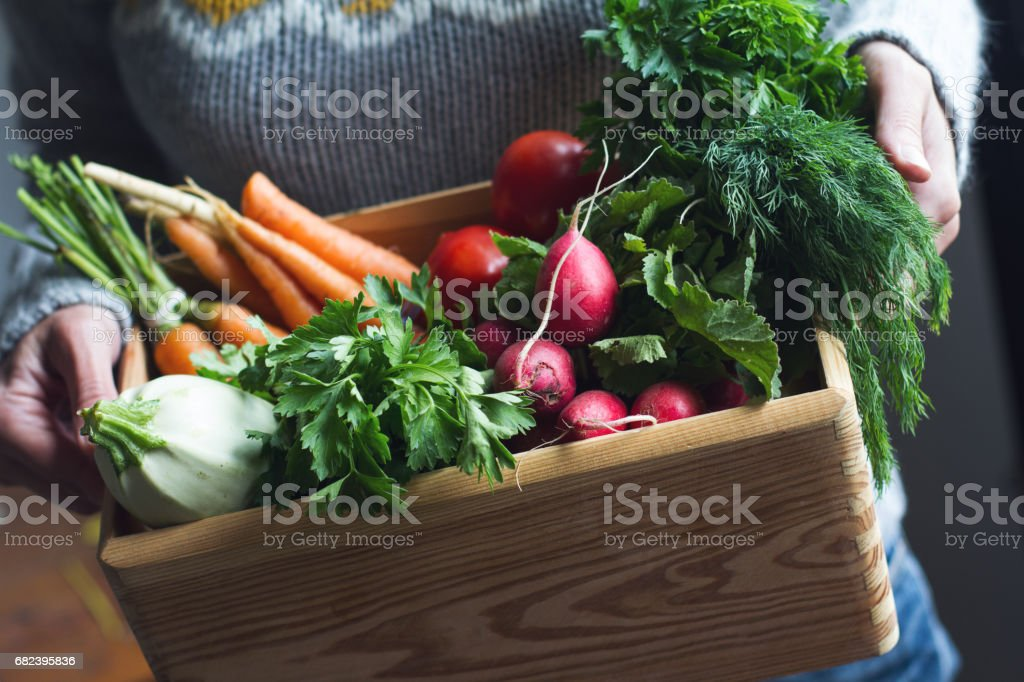 fresh vegetables from my garden stock photo