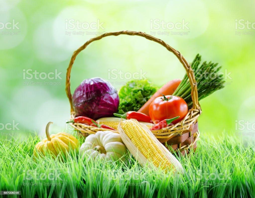 Frisches Gemüse im Korb auf grünen Rasen. Lizenzfreies stock-foto