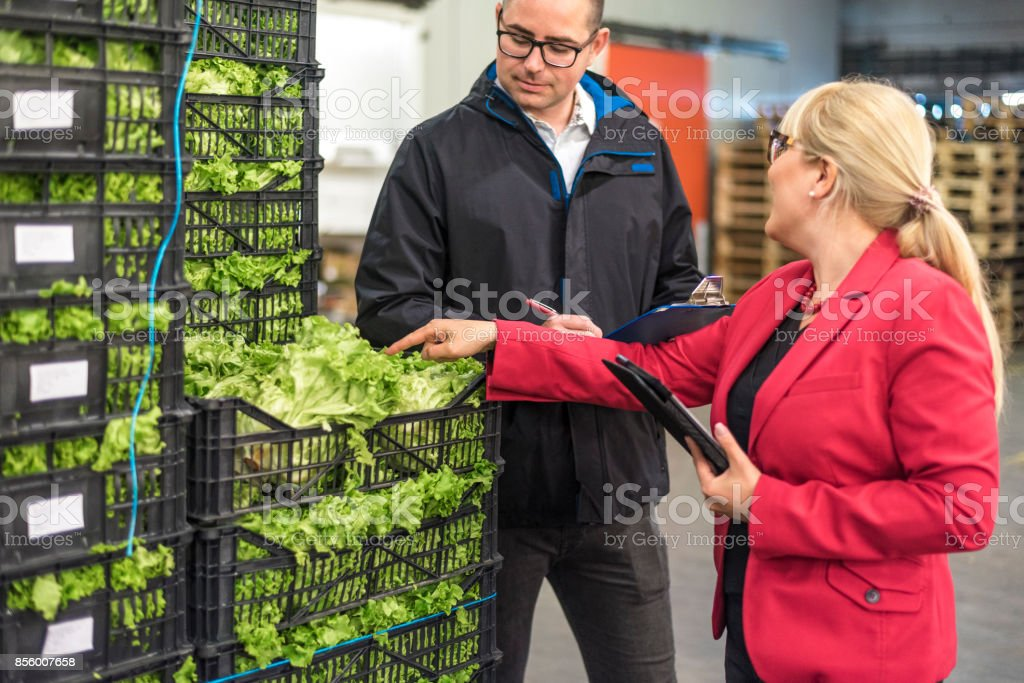 Fresh vegetables in warehouse stock photo