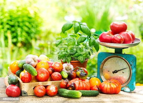 istock fresh vegetables 485593636