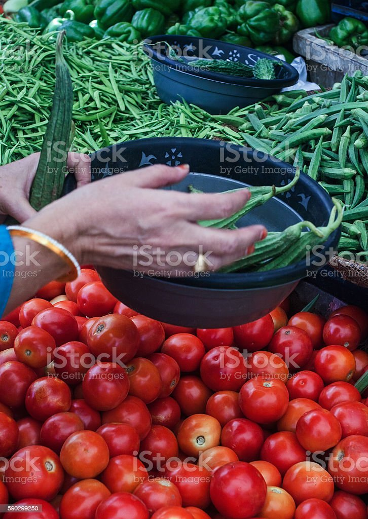 fresh vegetables royaltyfri bildbanksbilder