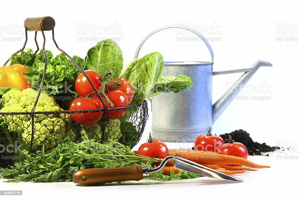 Fresh vegetables with watering can royalty-free stock photo