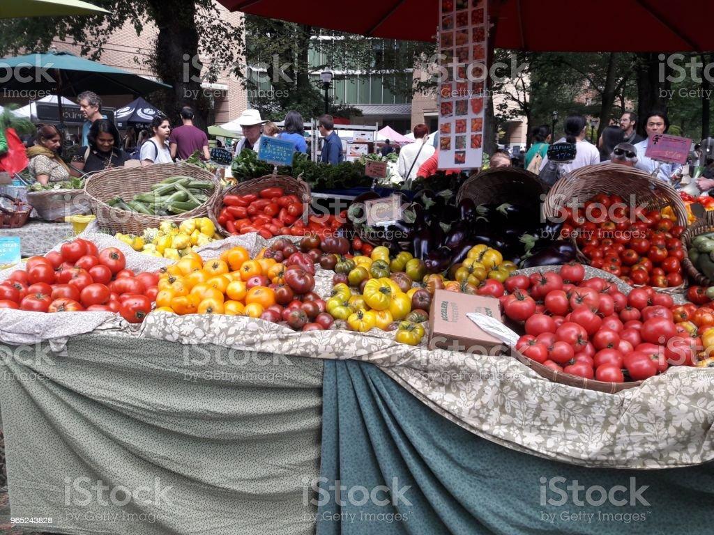 Fresh veggies zbiór zdjęć royalty-free