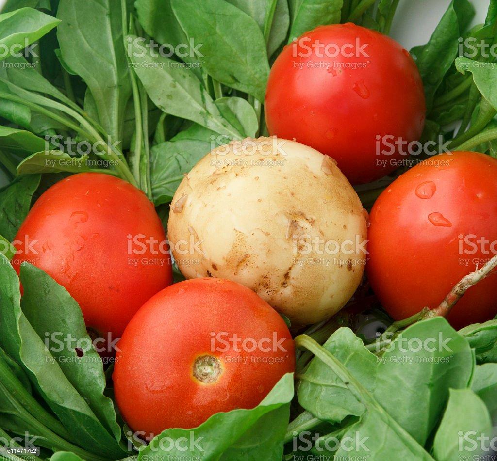 Fresh Vegitable stock photo