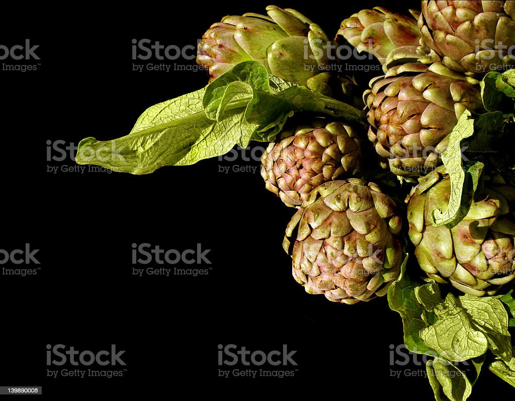 Fresh 'violet' artichoke with leaves royalty-free stock photo