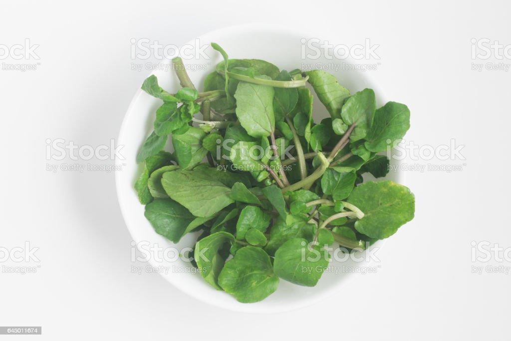 Folhas de agrião fresco em uma tigela - foto de acervo