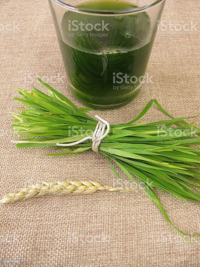 Fresh wheat grass juice stock photo