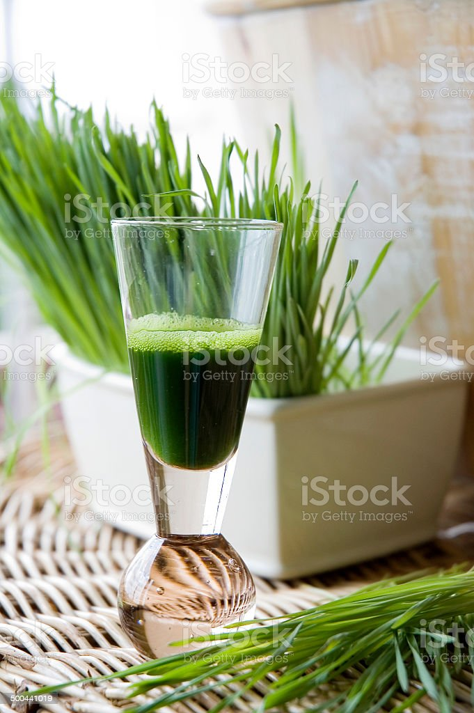 fresh wheatgrass with wheatgrass juice stock photo