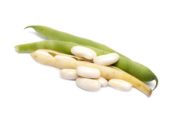 fresh white beans on white - fagioli cannellini foto e immagini stock