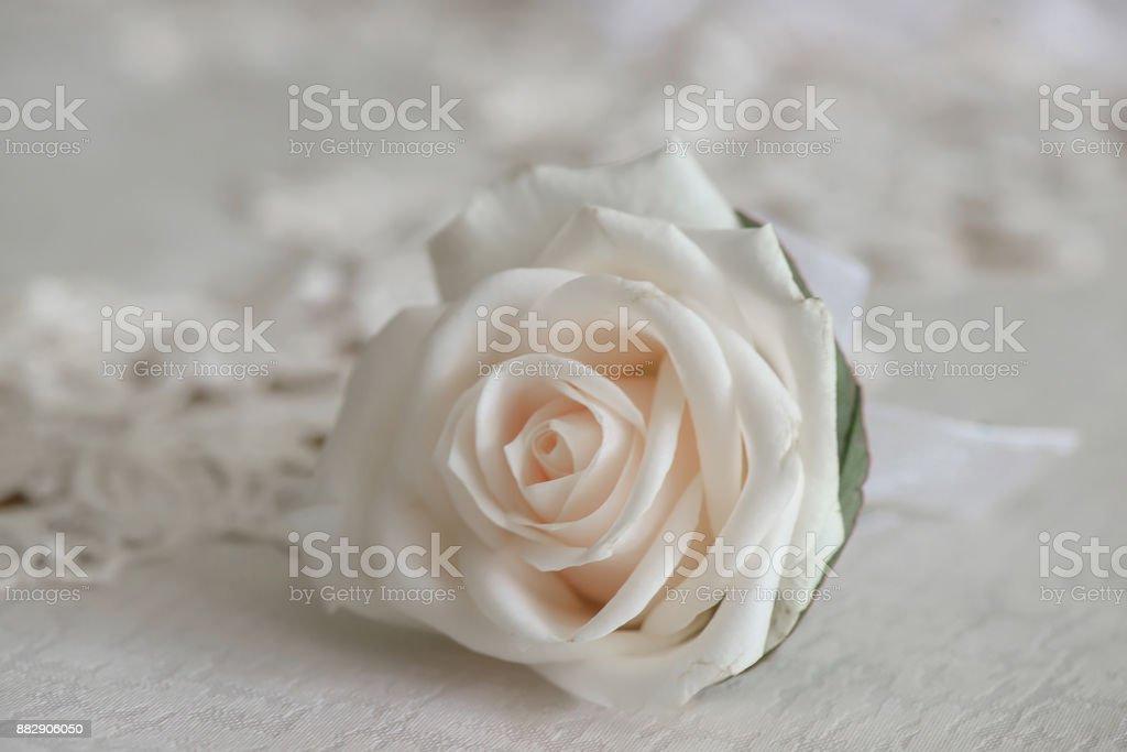 Fresco blanco bouquet rosa, pequeño para el ojal del traje o flor en el ojal - foto de stock