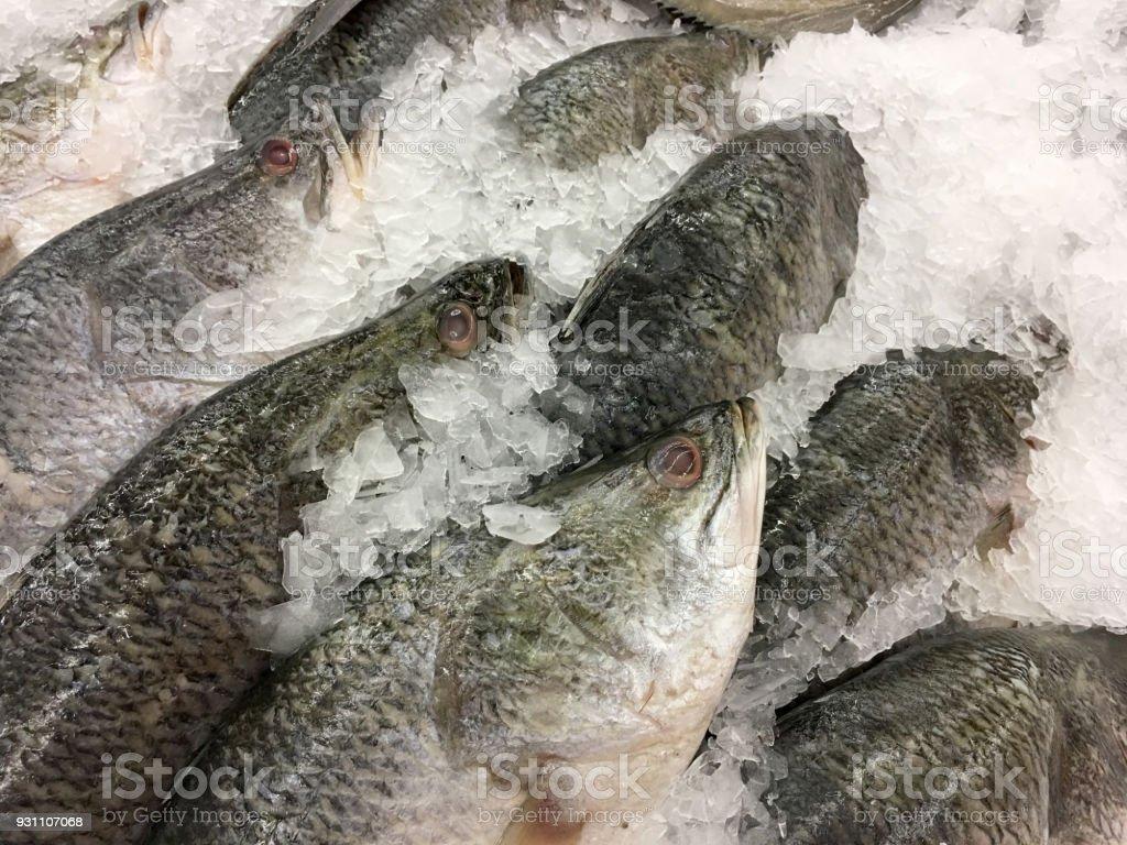 taze beyaz balığı buz yerel süpermarket veya mağaza. - Royalty-free Akşam yemeği Stok görsel