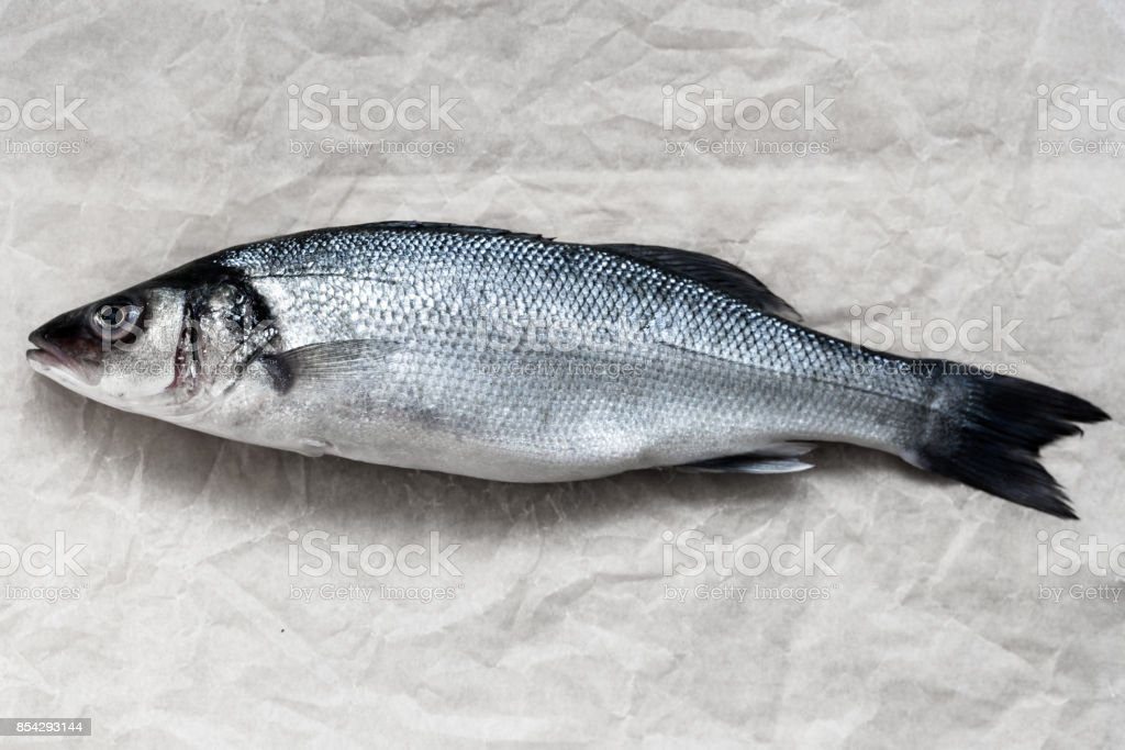 Fresh whole silver sea bass on vintage old parchment stock photo
