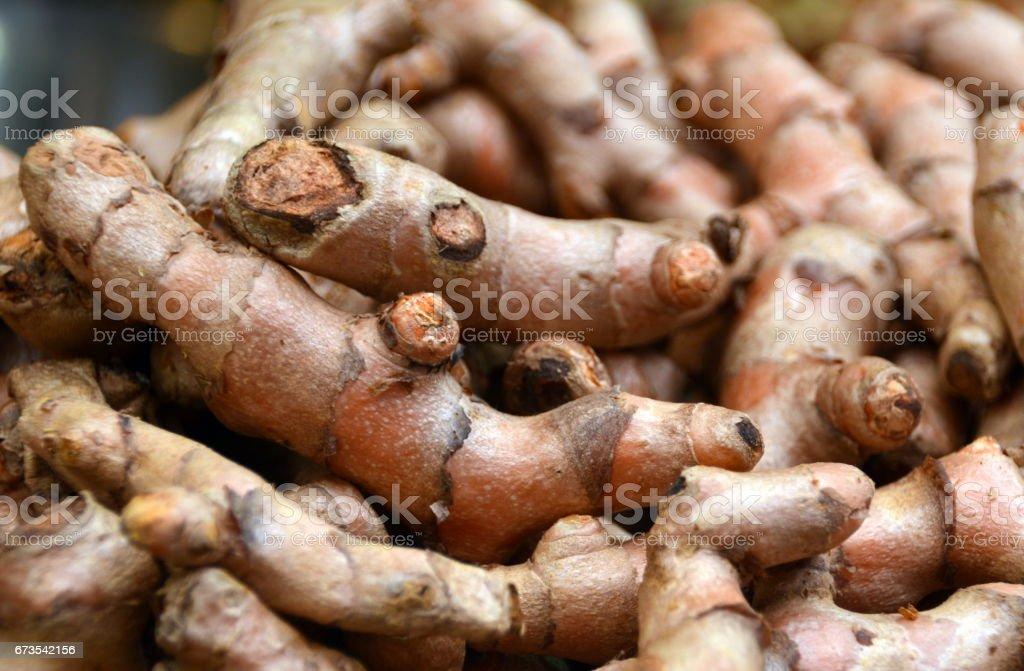 Fresh Whole Tumeric Roots or Rhizomes, on display at a Farmers Market royalty-free stock photo