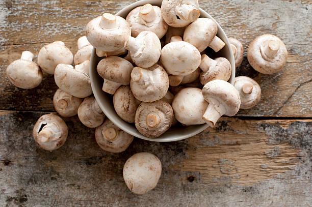 novo conjunto de botões de cogumelos - cogumelos imagens e fotografias de stock