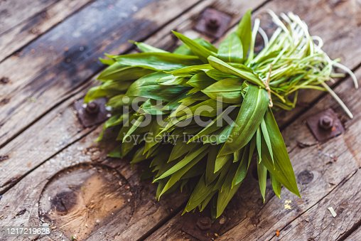 Fresh wild garlic or ramson on a rustic wooden table