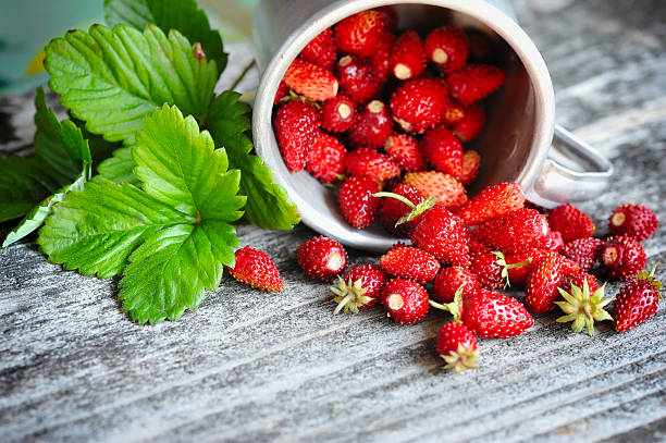fresh wild strawberries on an old wooden table - wilde aardbei stockfoto's en -beelden