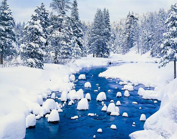 frische winter schnee bedeckt wald mit fluss - lake tahoe winter stock-fotos und bilder