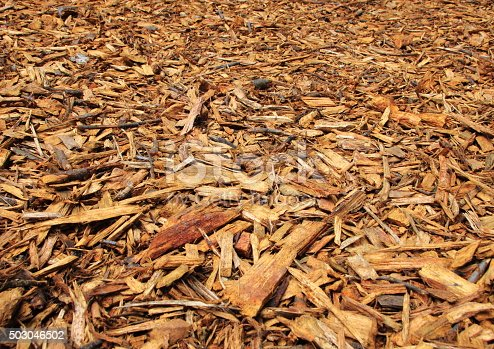Fresh Brown Wood Chips with Endless Perspective Background