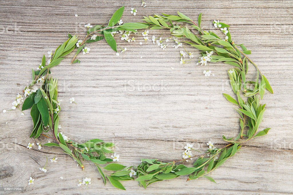 Fresh wreath. stock photo