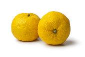 新鮮な黄柚子