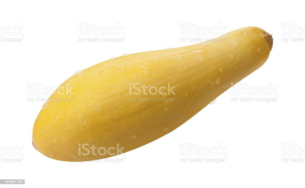 Fresh Yellow Squash Isolated with clipping path stock photo
