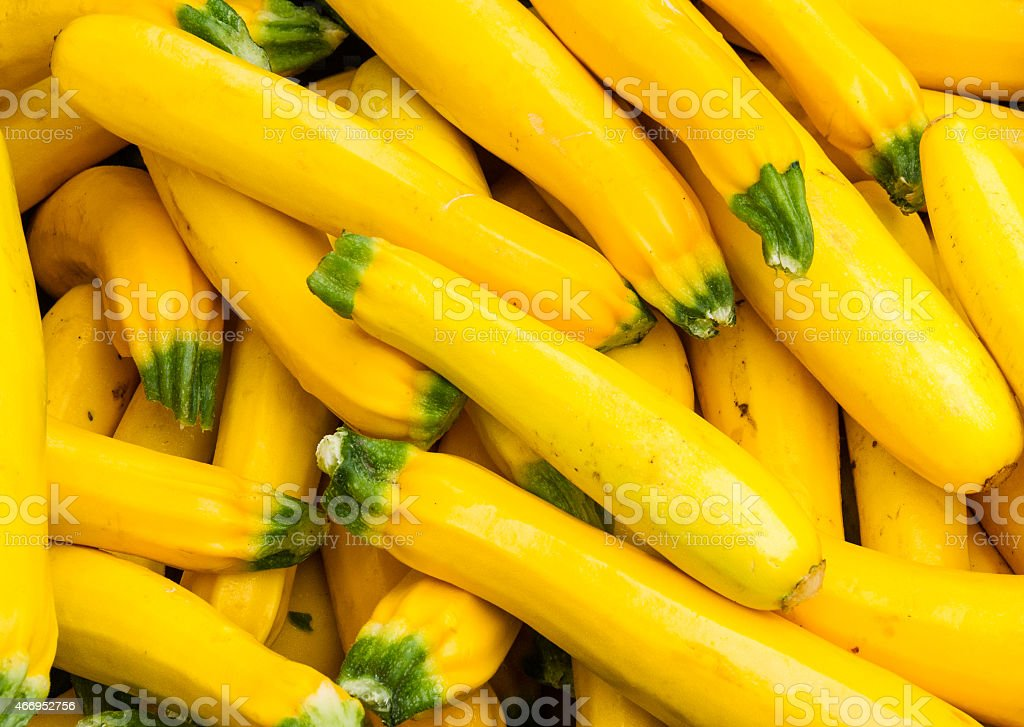 Fresh yellow squash on display at the farmers market stock photo