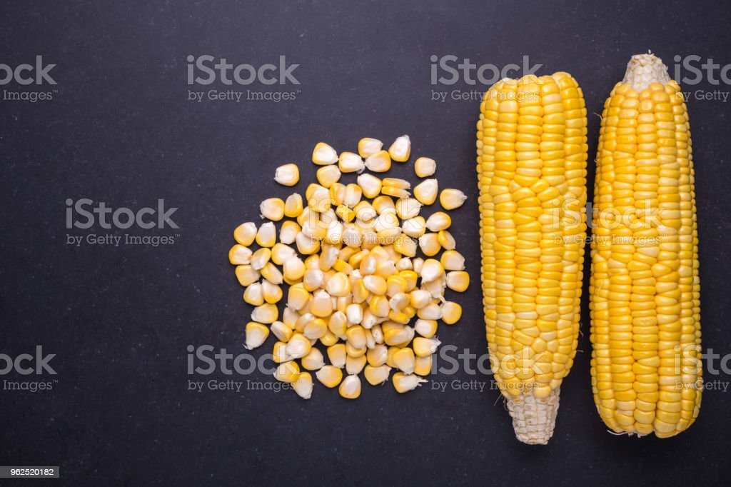 Fresh yellow sweet corn on the cob - Royalty-free Agriculture Stock Photo