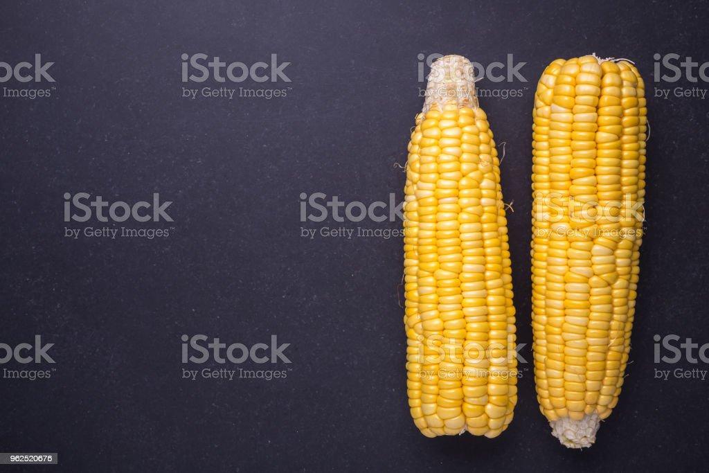 Fresco amarelo milho em espiga - Foto de stock de Agricultura royalty-free