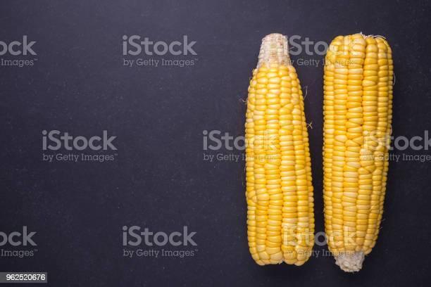 Foto de Fresco Amarelo Milho Em Espiga e mais fotos de stock de Agricultura