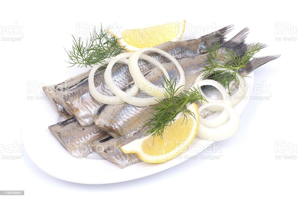 Fresh young herring stock photo