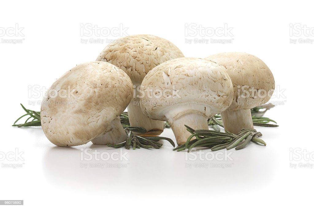 Fresh-cut mushrooms champignon royalty-free stock photo
