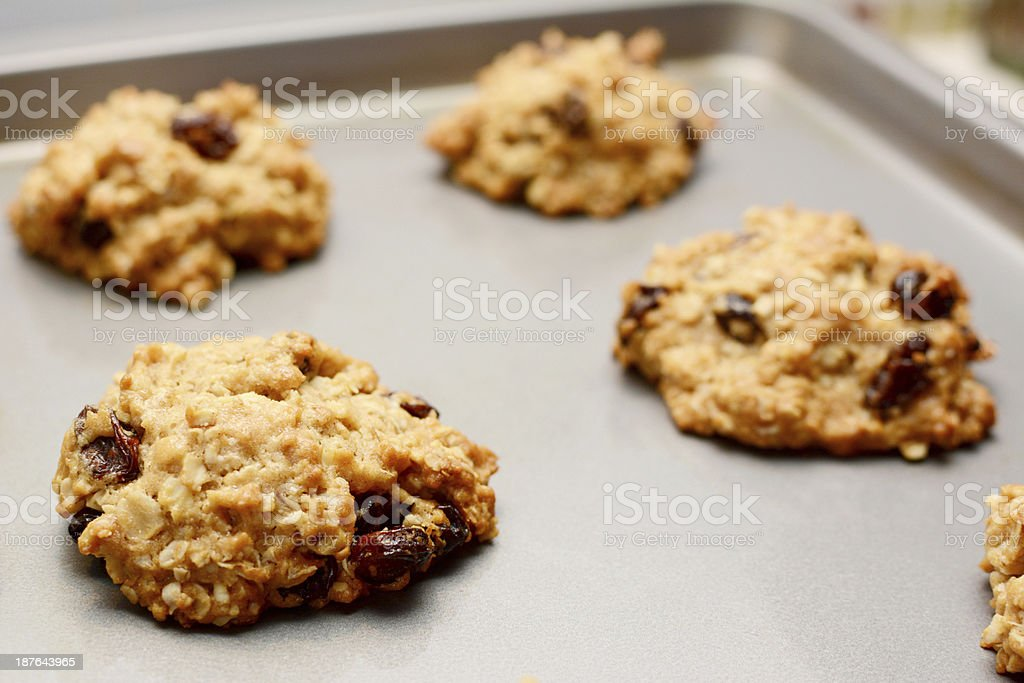 Freshly baked oatmeal raisin cookies stock photo