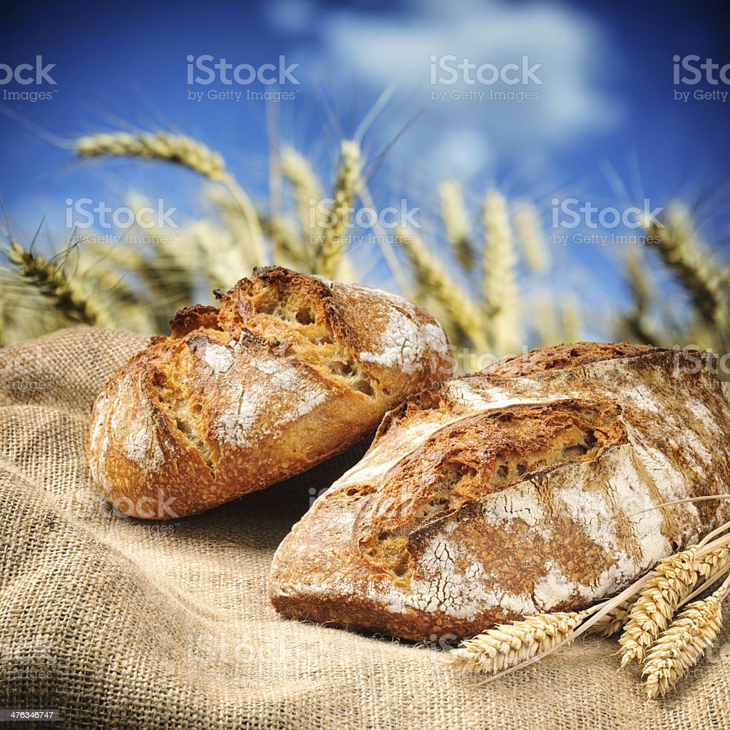 Freshly baked traditional bread with wheat field on background royalty-free stock photo