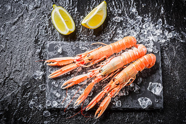 Freshly caught langoustines on ice stock photo