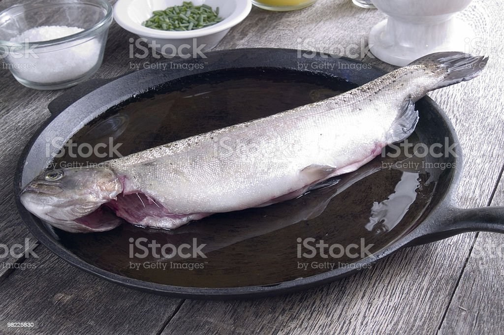 Freshly caught trout royalty-free stock photo