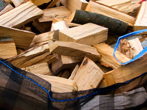 freshly chopped fuel-wood in a bag in a forest stock photo