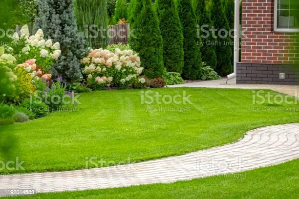 Photo of Freshly cut grass