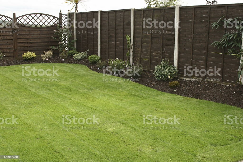 Freshly Cut Grass stock photo