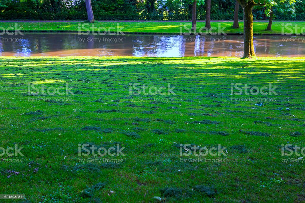 freshly cut lawn grass at park in brugge belgium photo libre de droits