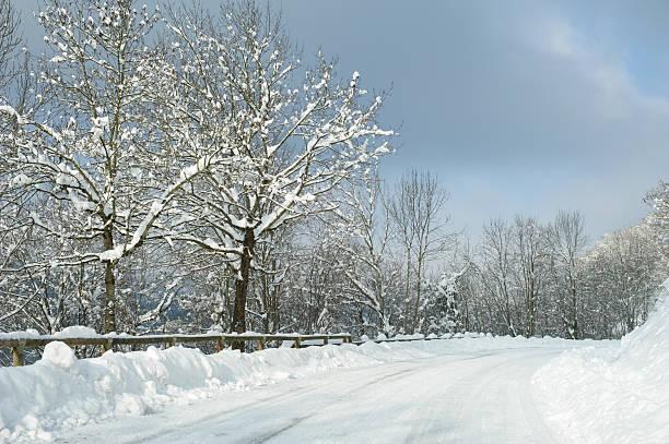Recién caído nieve - foto de stock