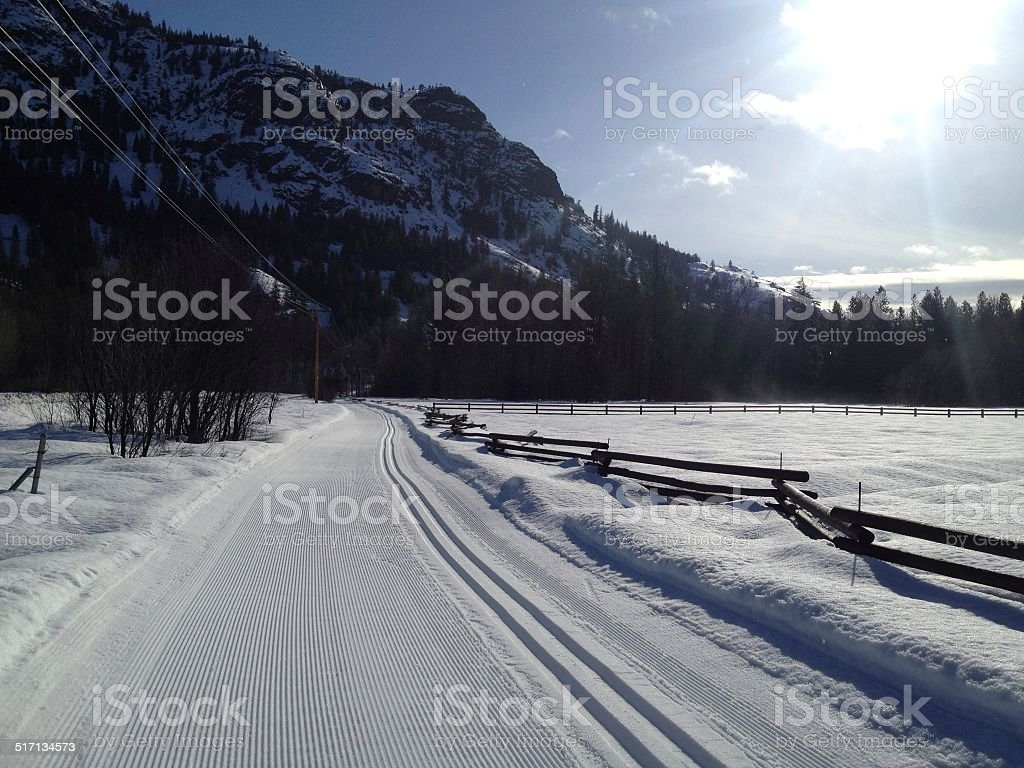 Freshly groomed untracked cross country ski trail stock photo