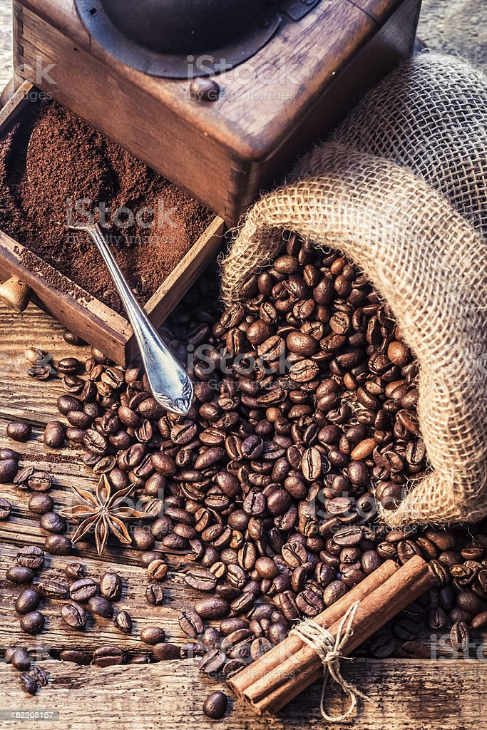 Freshly ground coffee beans in the grinder stock photo