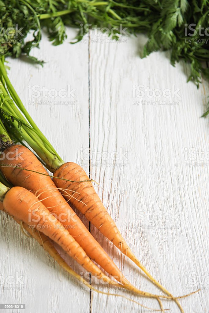 Freshly grown carrots Lizenzfreies stock-foto