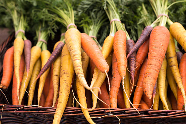 freshly harvested, colorful organic carrots at farmers market stock photo