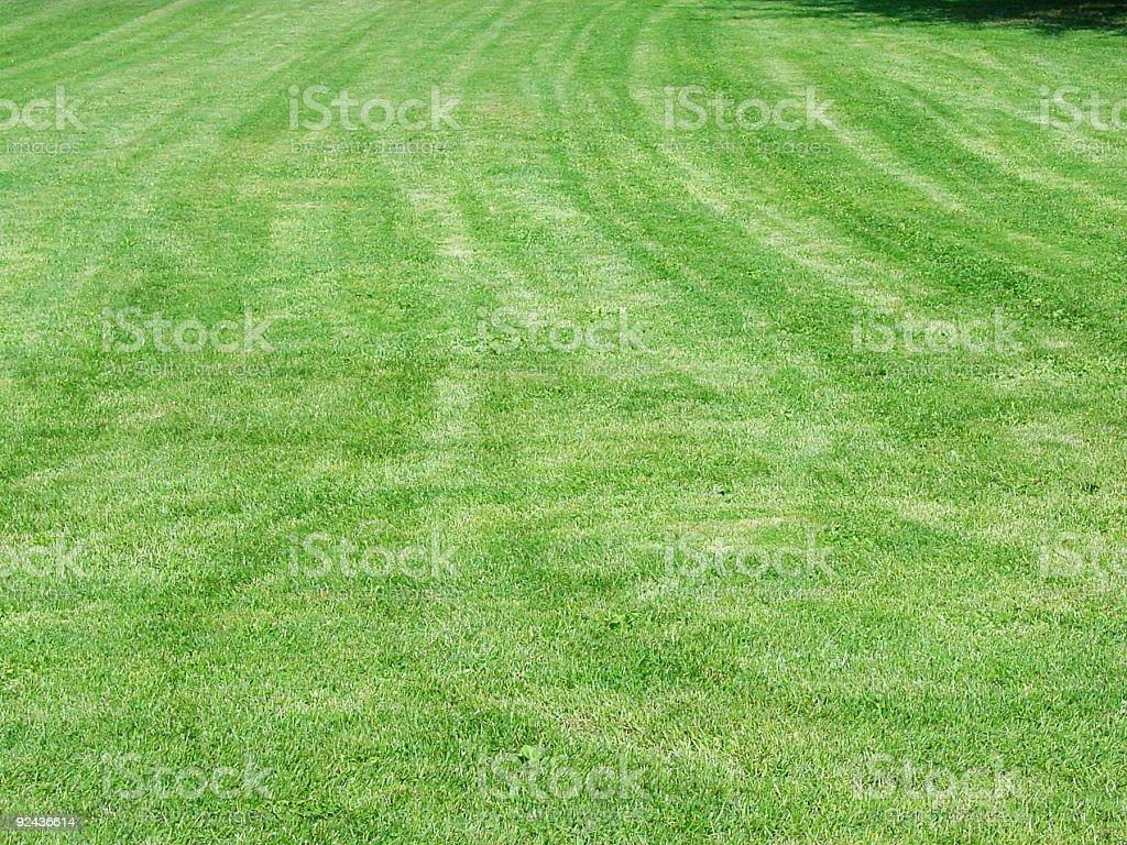 Freshly mowed lawn royalty-free stock photo