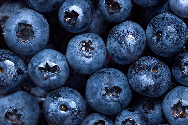 Freshly picked blueberries in water stock photo
