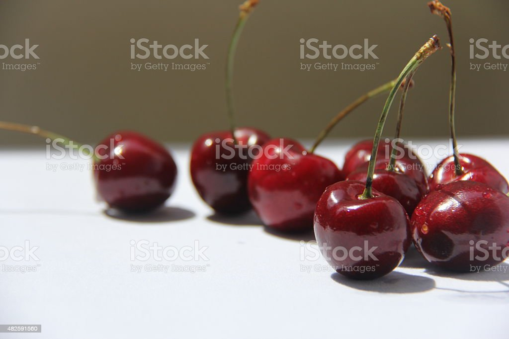 Freshly picked cherries stock photo