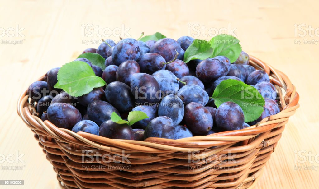 Freshly picked damson plums royalty-free stock photo